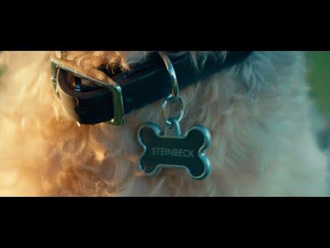 Weezerが最新アルバムから「Grapes Of Wrath」のミュージック・ビデオを公開
